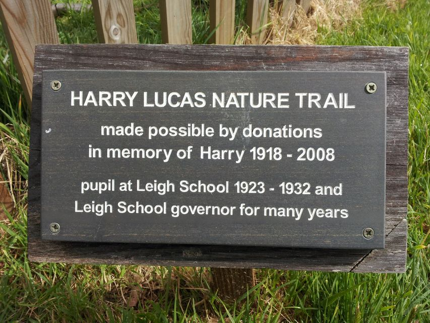 Harry Lucas Nature Trail
